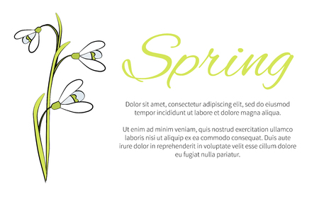 Spring Floral Banner with Text, Made of Snowdrops