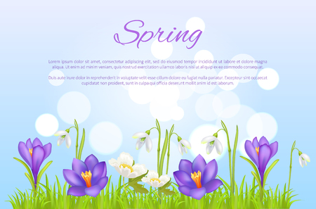 Spring Poster Greeting Card Springtime Flowers Vettoriali