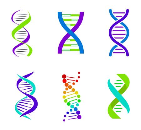 Colorful DNA Spirals, Bright Vector Illustration