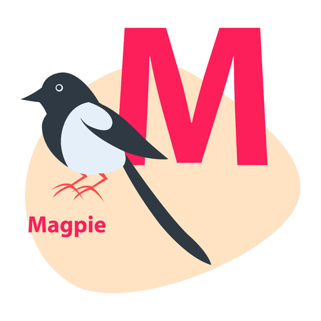 Zoo ABC Letter with Cute Magpie Cartoon Vector