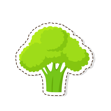 Ripe Broccoli Flat Vector Isolated Sticker or Icon