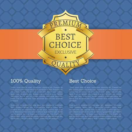 Best Choice 100 Quality Golden Brand Label Icon Stockfoto - 101964293