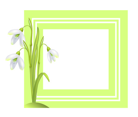 Greeting Card with Framing Snowdrop Galanthus Bell