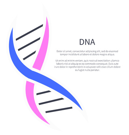 DNA of Nucleotides Carrying Genetic Info