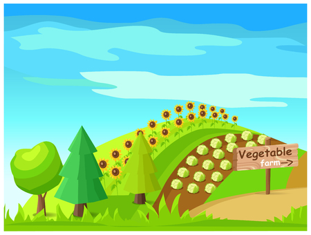 Vegetable Farm Vector with Harvest On Field Illustration