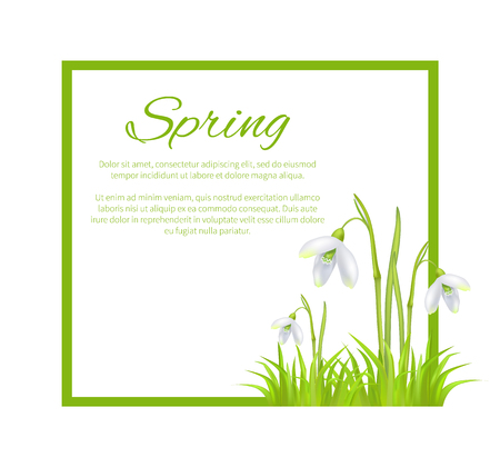 Spring Poster with Text in Frame Colorful Flowers