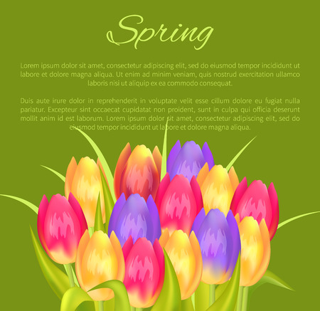 Spring Poster Place for Text and Colorful Bouquet