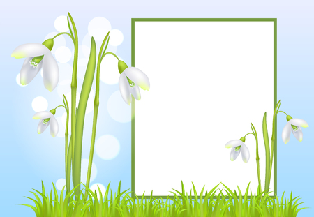 Frame for Text and Snowdrop Galanthus Bell Flowers