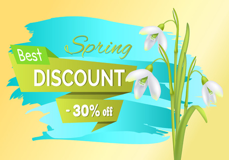 New Offer Discount Sale Spring Poster Text Flowers