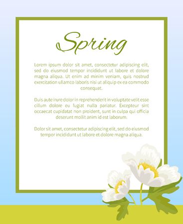 Spring Poster Place Text in Frame Anemone Snowdrop