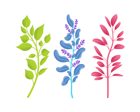 Small Thin Branches of Wild Natural Plants Set Stock Vector - 102127334