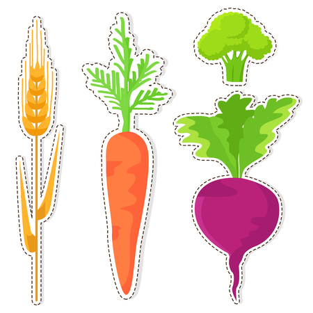 Ripe Cereal and Vegetables Vector Stickers Set