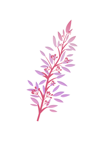 Thorny Shrub with Pink Leaves Red Berries Vector