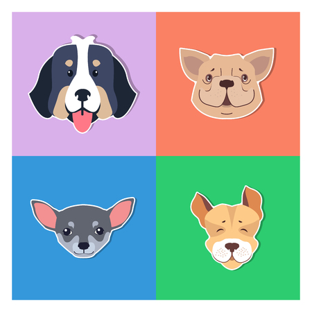 Four Canine Heads of Pedigreed Dogs Doggie Concept