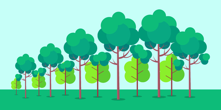 Poster Depicting Forest Trees Vector Illustration