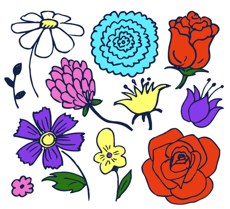 Pretty Color Flowers Aggregate Vector Illustration Illustration