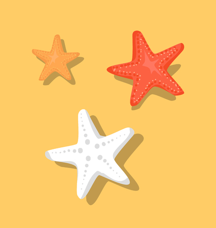Starfish or Sea Stars Star-Shaped Echinoderms Set Ilustração