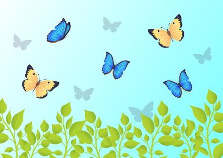 Butterflies that Fly Over Green Grass in Blue Sky