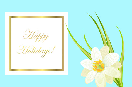 Happy holidays framed card with white narcissus nearby