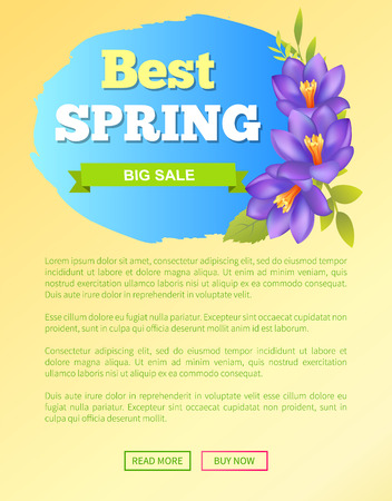 Best Spring Big Sale Off Web Poster Online Buttons Stock Vector - 102565924
