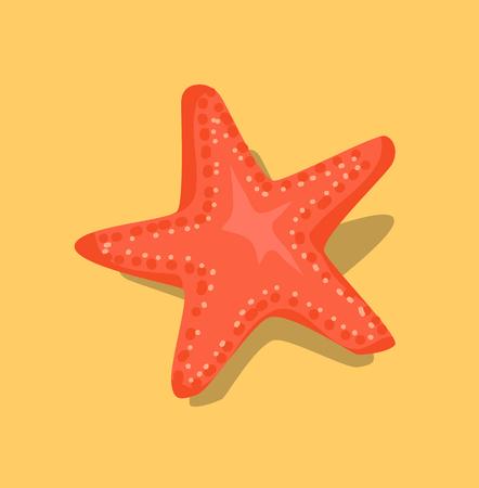 Red Starfish or Sea Star Star-Shaped Echinoderm