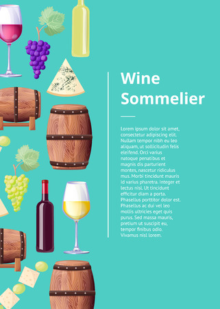 Wine Sommelier Info Poster with Wooden Barrels