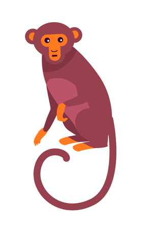 Cute Funny Monkey with Long Thin Tail Illustration