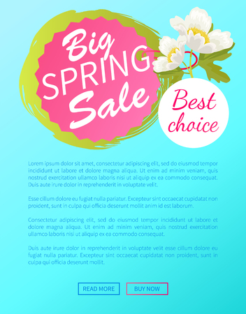 Best Choice Big Spring Sale Off Web Poster Online Stock Vector - 103227640