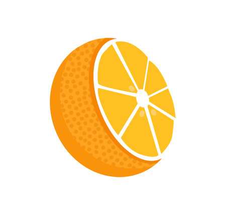 Orange Fruit Whole and Half Vector Illustration
