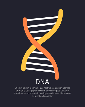 DNA Yellow and Orange Helix Colorful Illustration Illustration