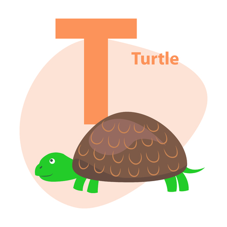 Zoo ABC Letter with Cute Turtle Cartoon Vector