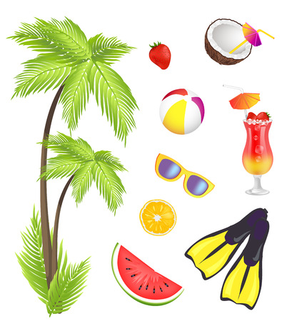 Summer and Items Collection Vector Illustration