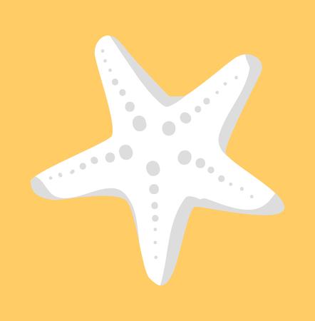 White Starfish or Sea Star Star-Shaped Echinoderm