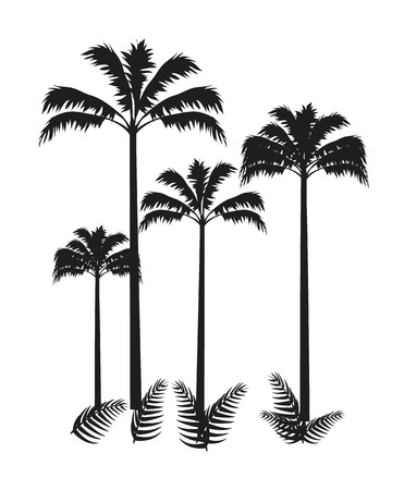 Four Palms Isolated on Bright Vector Background