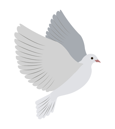 Gorgeous albino dove flies and spreads large wings isolated cartoon flat vector illustration on white background. Small bird that symbolizes love.