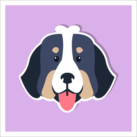 Doggie face of Bernese Mountain Dog cartoon drawing on purple background. Heavy swiss highland and shepherd dogs shows red tongue. Close-up funny doggy head icon three-tone color graphic design.
