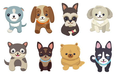 Dogs and puppies collection, poster with pets, of different breeds, pug and basset hound, labrador and chihuahua, dachshund dog on vector illustration Vettoriali
