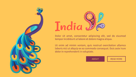 India happy Independence Day colorful celebrative vector web card in flat design of peacock animal and inscription on yellow background with feathers Illustration