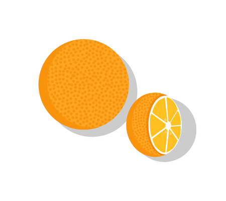 Orange fruit whole and half vector illustration of orange healthy ripe organic fruits isolated on white background. Healthy dieting tropical oranges