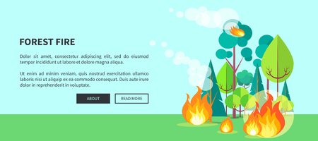 Forest fire web poster with inscription. Vector illustration of raging wildfire that has engulfed lush trees, bushes and grass on background of blue sky