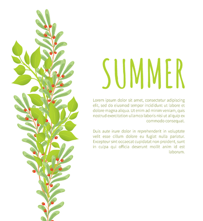 Summer poster with green branches leaves and berries, deciduous swamp holly spring branch with green leaf and red fruit vector illustration summer poster