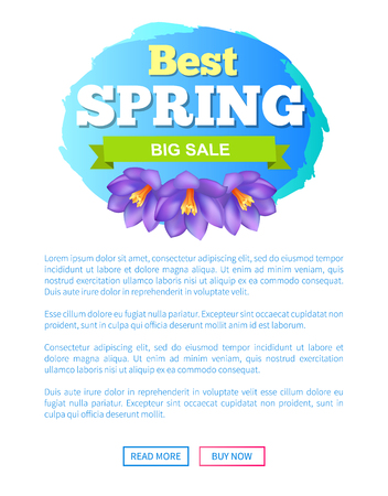 Best spring big sale advertisement label crocus purple flowers vector on webpage with push buttons read more and buy now. Emblem blossom of plants
