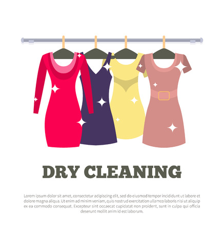 Dry Cleaning Service Poster Women Dresses Hanging