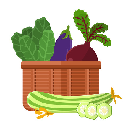 Harvest in basket collection with lettuce and beetroot, marrow and eggplant, harvest and vegetables vector illustration isolated on white background Stock Illustratie