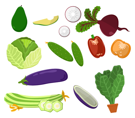Avocado and beeteroot set of vegetarian food and vegetables, cabbage and onion, pepper and cucumber, vegetarian food isolated on vector illustration Illustration