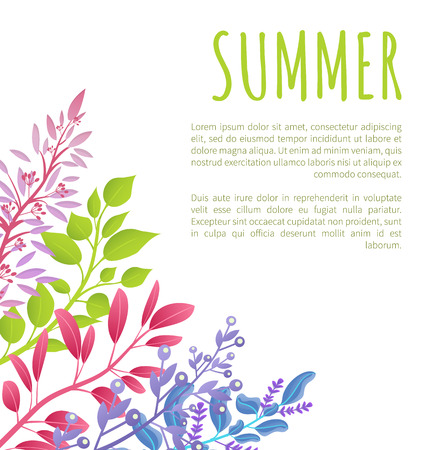 Summer poster template with colorful branches and sample text. Seasonal banner with wild aromatic herbal plants isolated cartoon vector illustration.