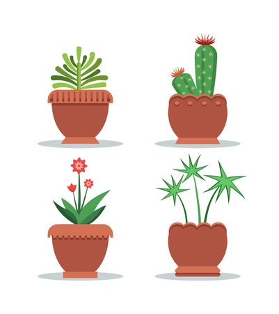 Green fresh room plants grown in big clay pots set. Indoor plants for decoration and to spread oxygen. Cactus and leafy plants vector illustrations.