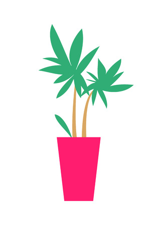Plant with broad leaves poster, green decorational element with pot of pink color, interior decor of rooms vector illustration, isolated on white Illusztráció