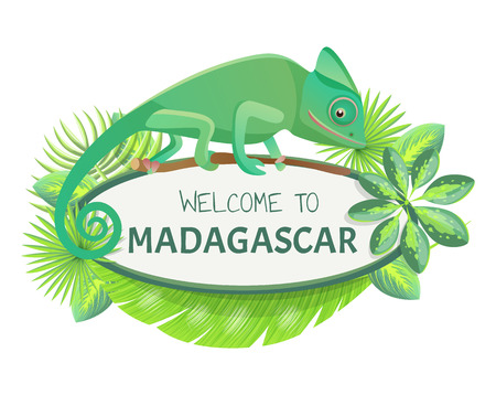 Welcome to madagascar banner with text sample and leaves, lizard and headline, welcome to Madagascar vector illustration isolated on white background