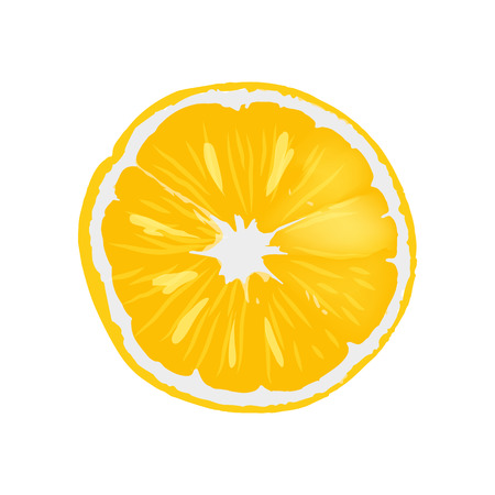 Fresh ripe orange juicy round slice. Delicious tropical citrus fruit. Natural fruitage full of healthy vitamins isolated vector illustration